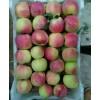 诚信代办/早熟苹果大量供应15165546797