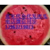 河南太康西瓜代办批发价格咨询13963719073