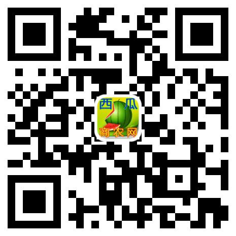 西瓜商农网15x15 (1)